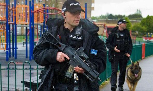 police-399984