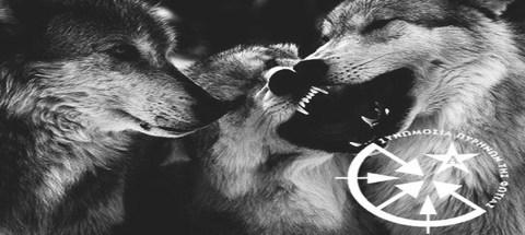 CCFwolves
