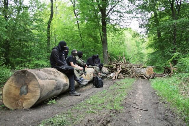 Almanya: Hambach Ormanlarını Koruma Mücadelesi Sürüyor